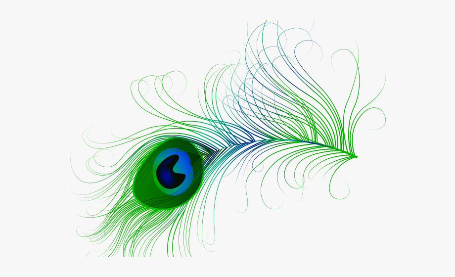 Peacock clipart turquoise. Bird transparent feather clip