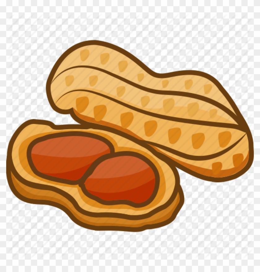 Peanut clipart ground nut. Legume icon free transparent