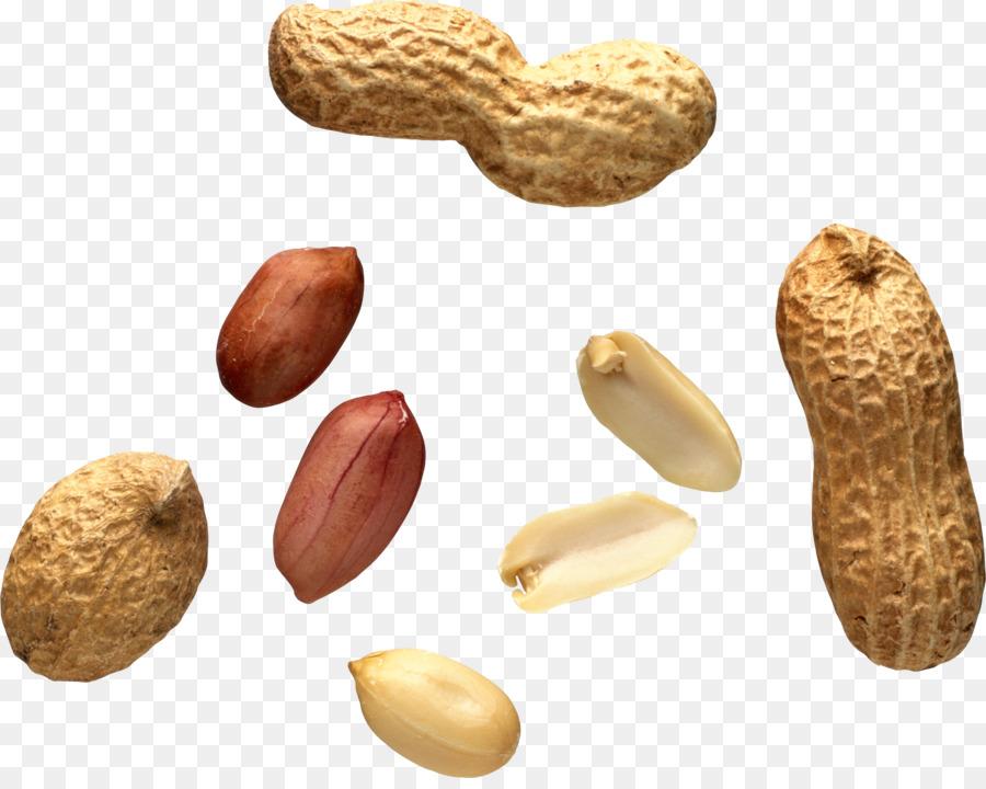 Peanuts clipart nut seed. Fruit cartoon food transparent