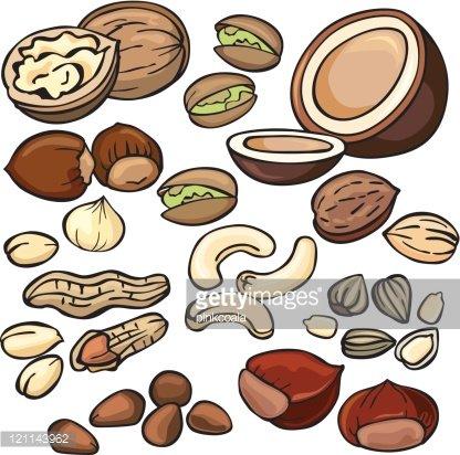 Nuts seeds icon set. Peanuts clipart nut seed