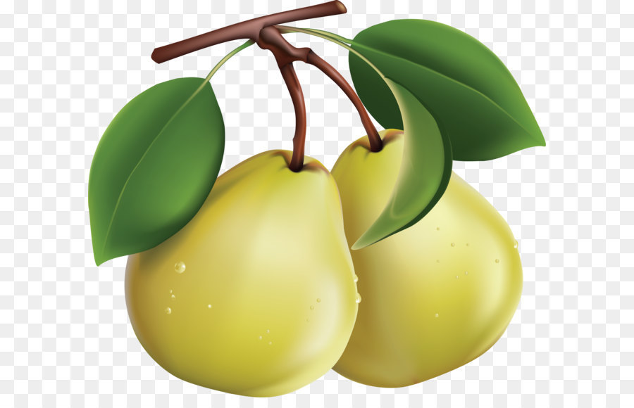 Pear clipart. Clip art png image