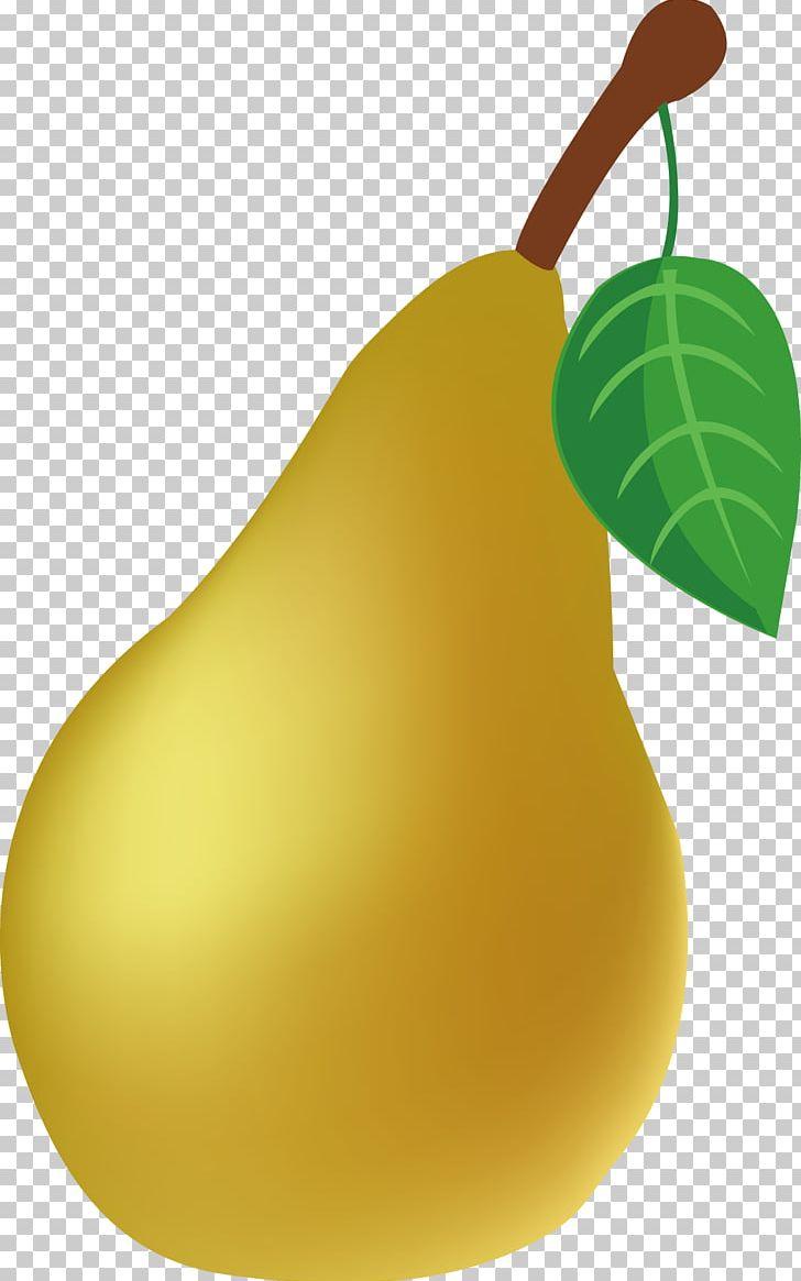 Pear clipart 3 fruit. European auglis png cartoon
