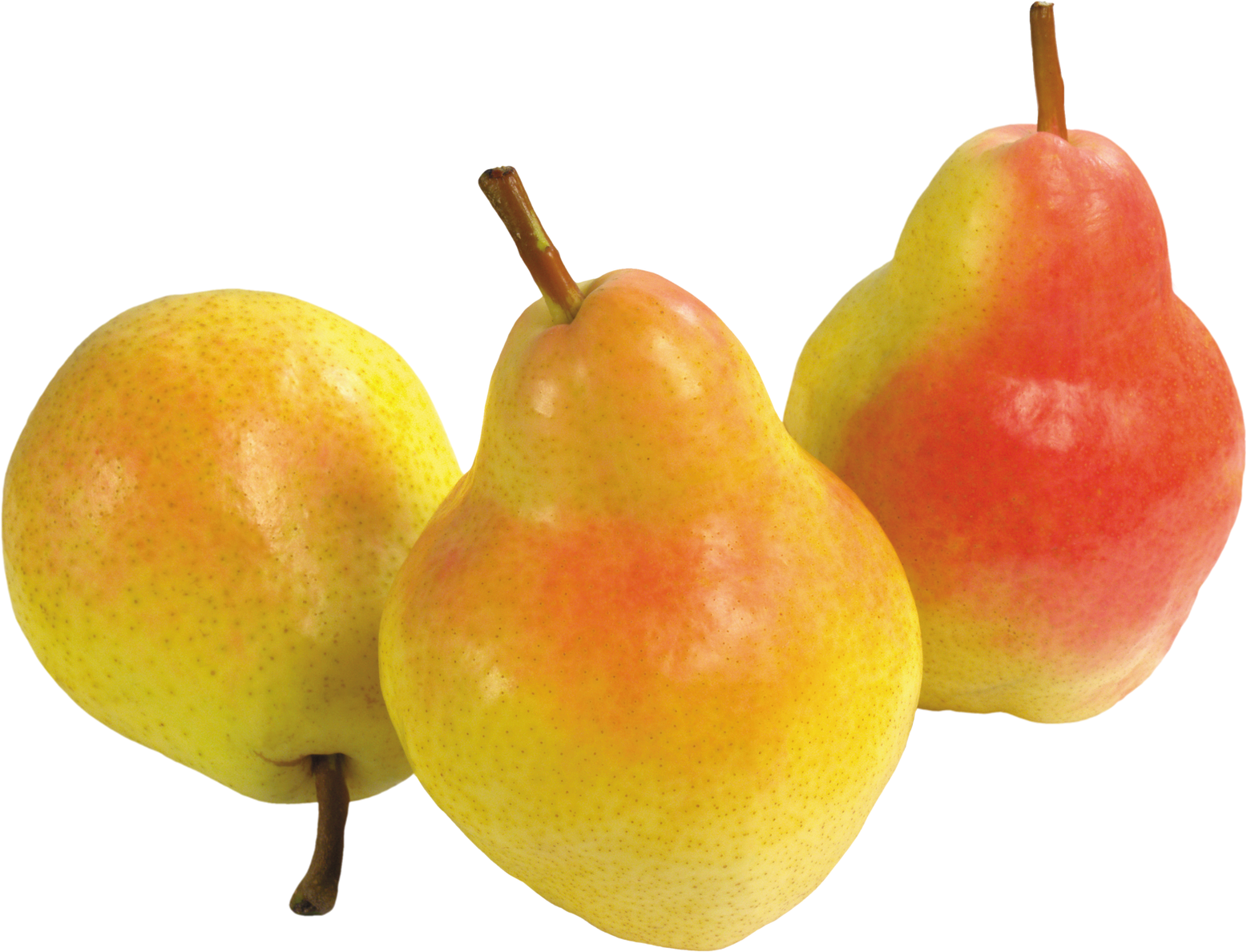 Png image purepng free. Pear clipart 3 fruit