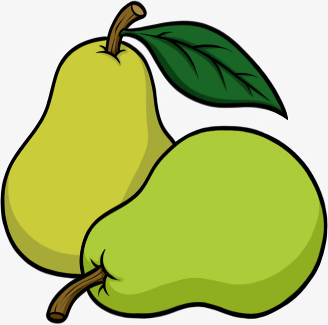 Cyan pears graphic design. Pear clipart