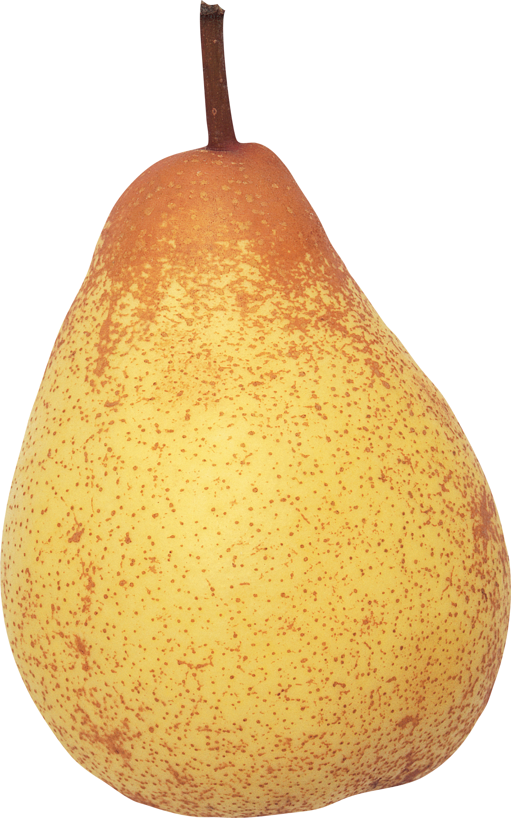 Pear clipart apple pear. Png image purepng free