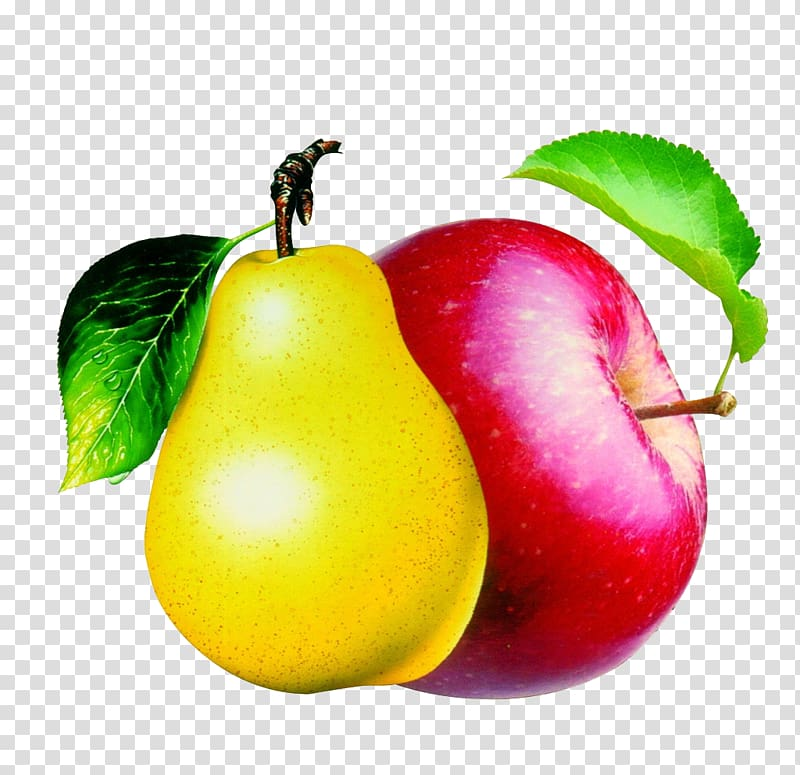 Pome apples and pears. Pear clipart apple pear