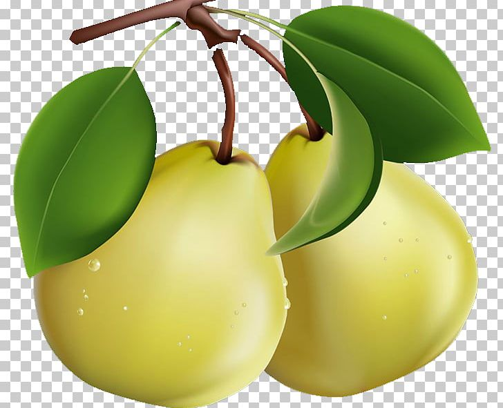 Png apple pears decoration. Pear clipart beautiful