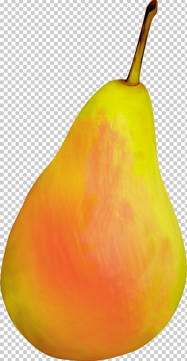 Pear clipart beautiful. Still life photography png