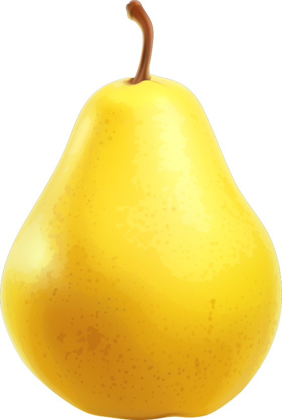 Pear clipart calabash.  cooking