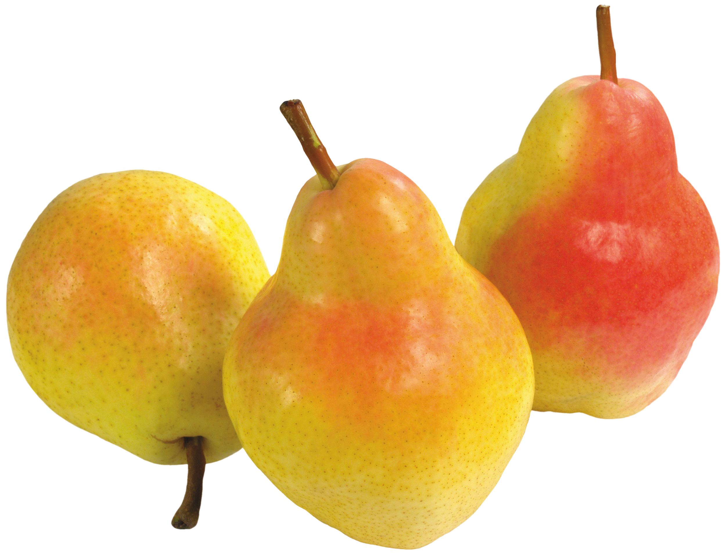 Three pears png best. Pear clipart cartoon