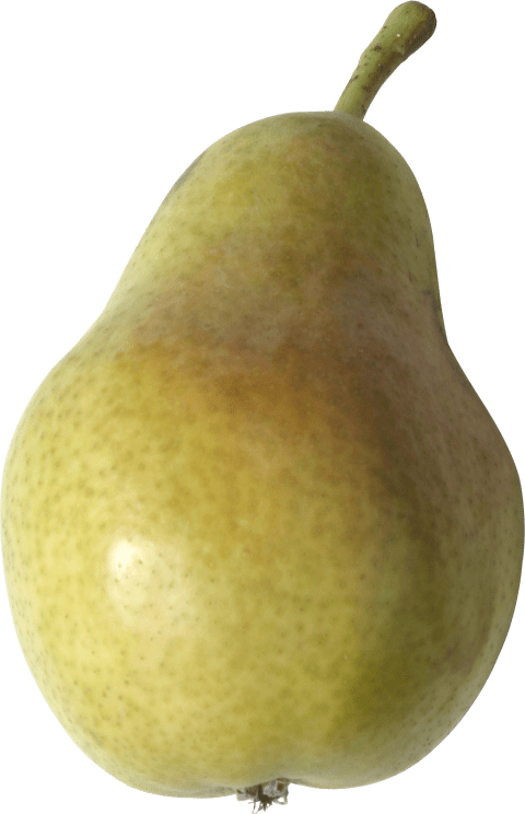 Png free images toppng. Pear clipart different kind fruit