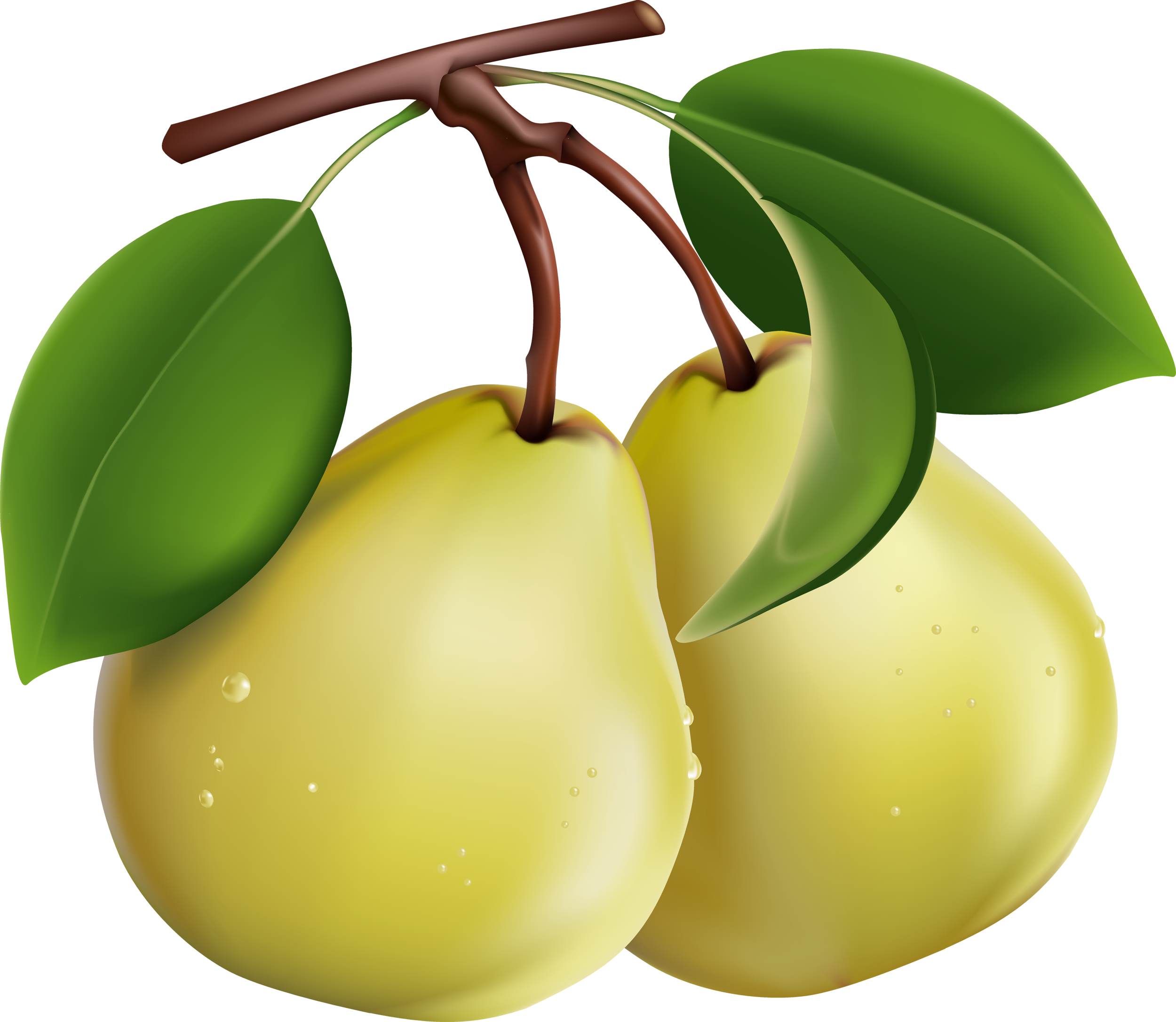 Png transparent images all. Pear clipart different kind fruit