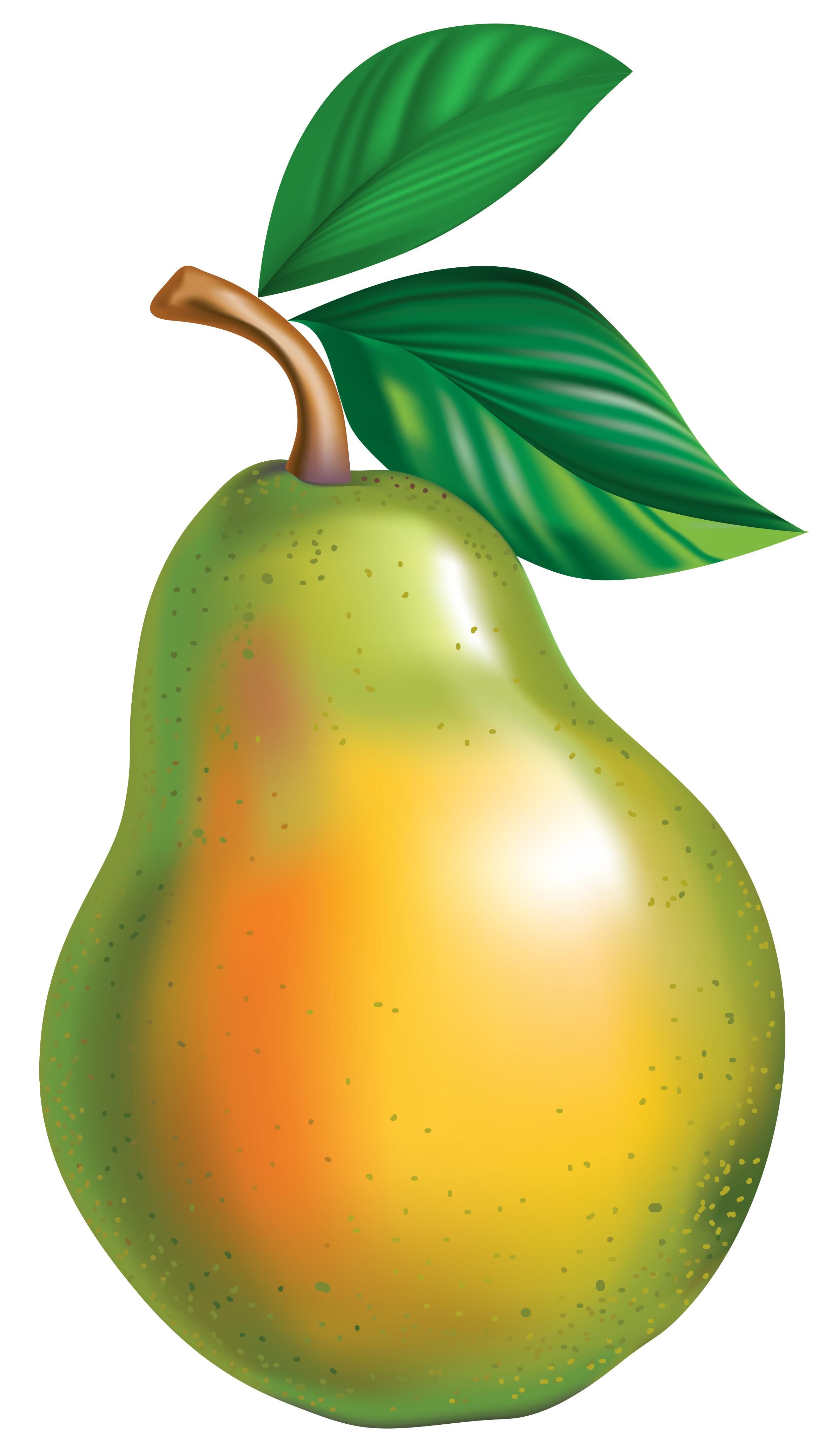 Asian clip art png. Pear clipart different kind fruit