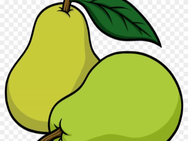 Pear clipart drawn. Free download clip art