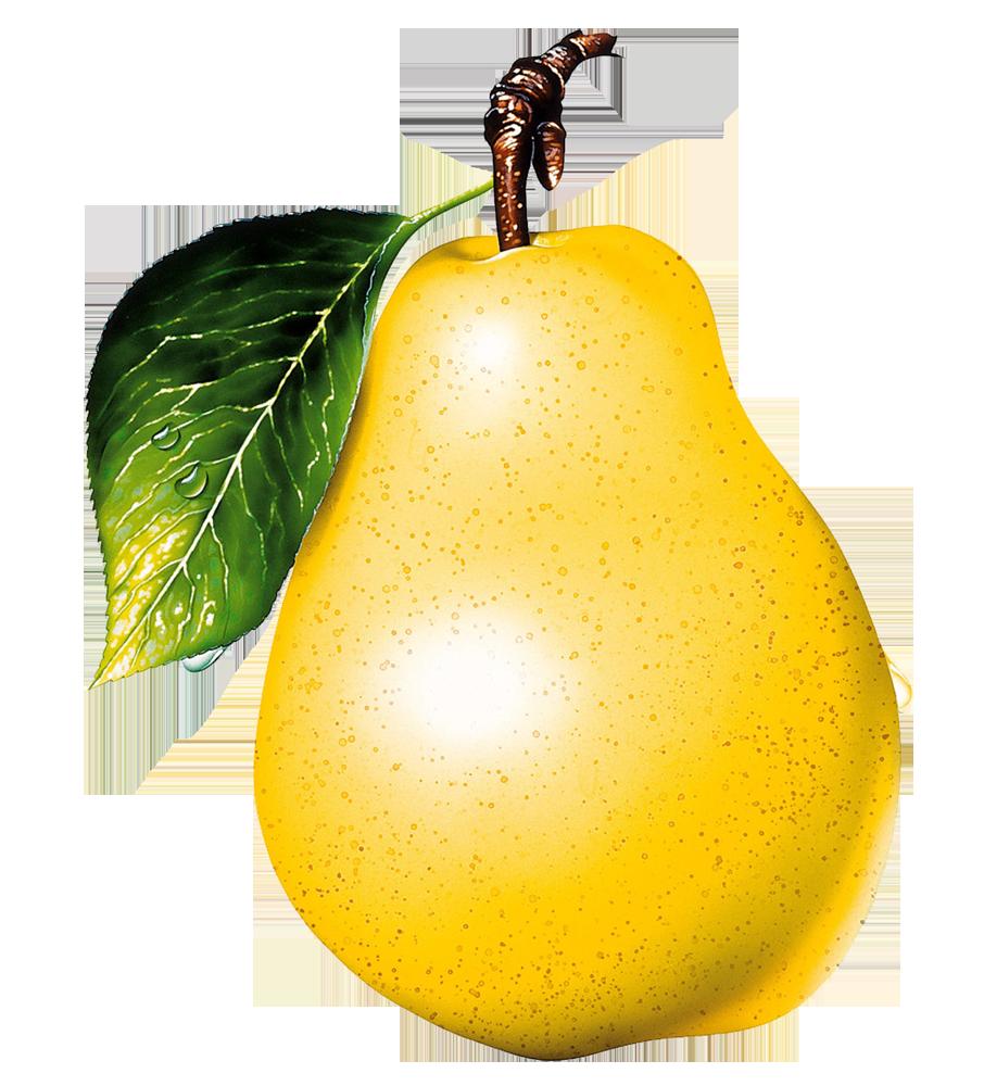 Pear clipart five. Twenty isolated stock photo