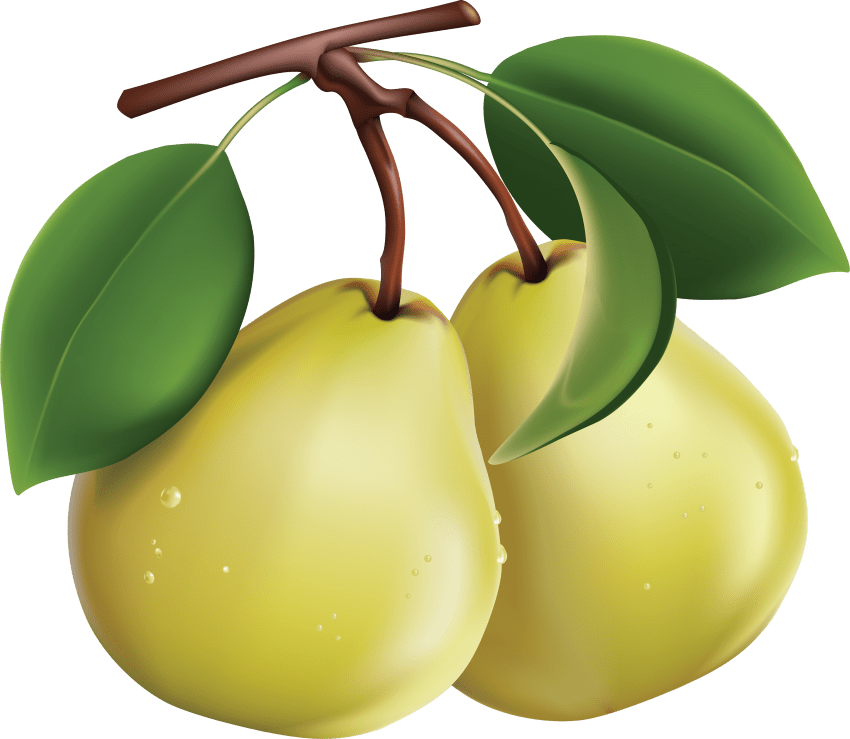 Pear clipart green pear. Png free images toppng