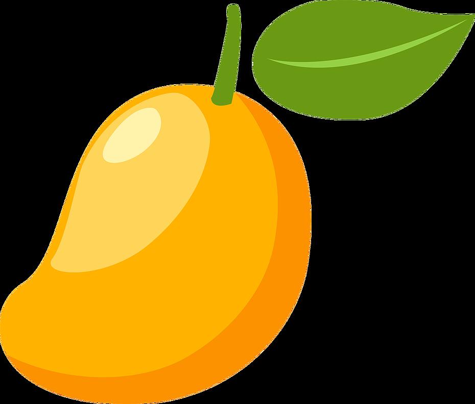Mangifera indica clip art. Pear clipart mango