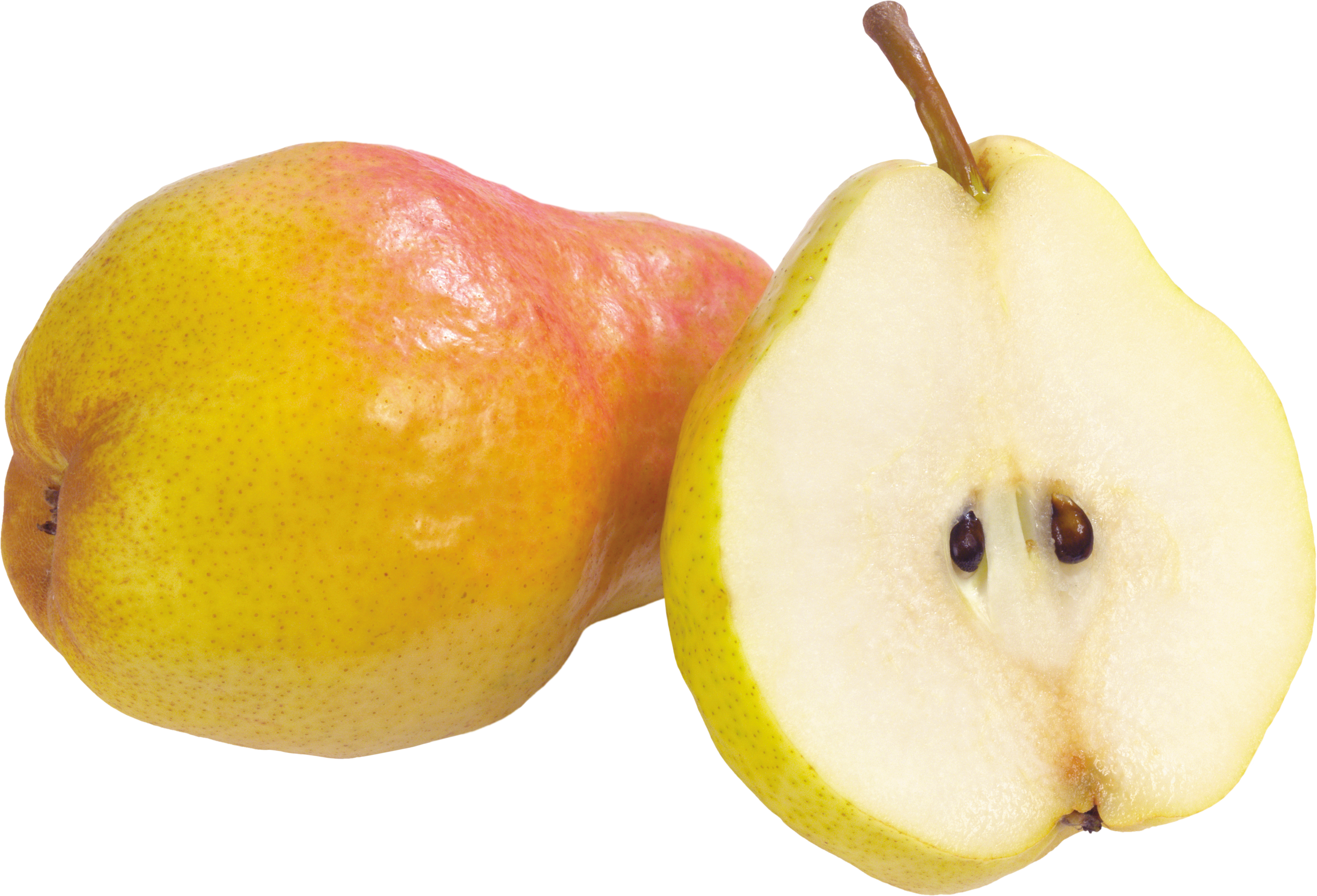 Image gallery expansion png. Pear clipart nashpati