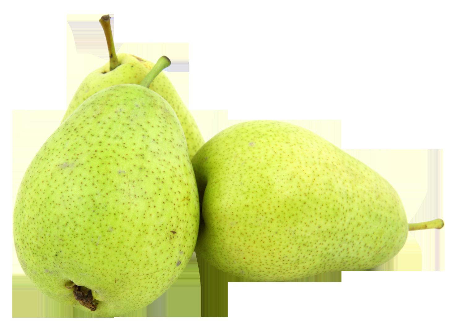 Pear clipart nashpati. Png transparent images free