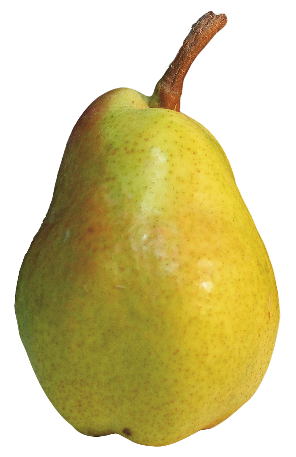 Png transparent images free. Pear clipart nashpati