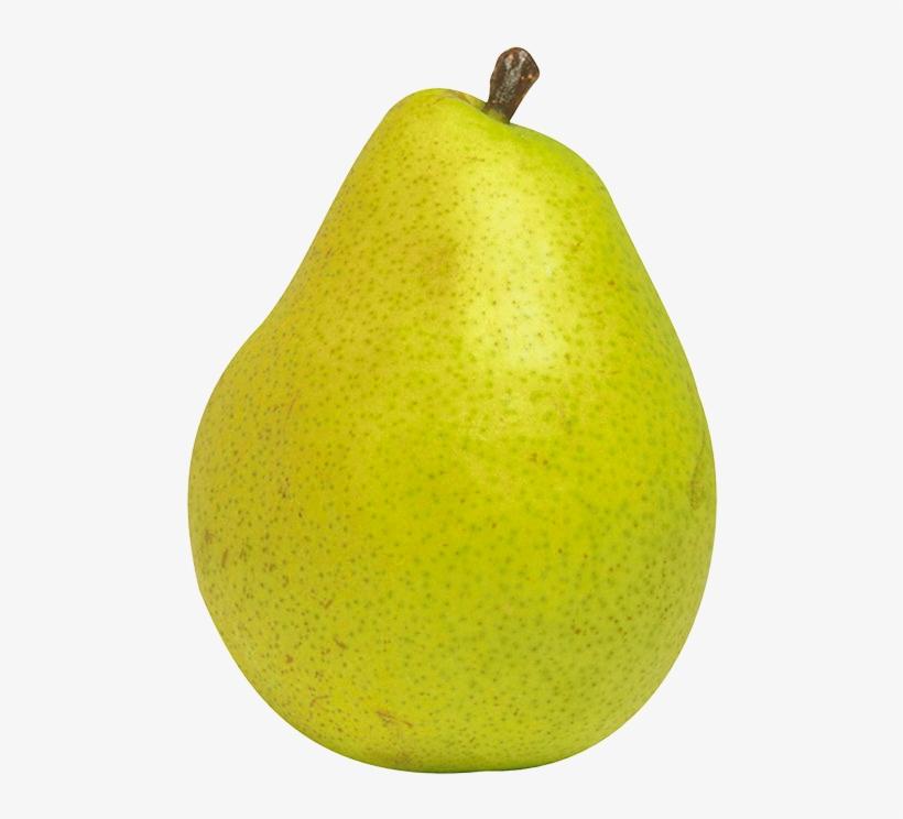 Fruit png transparent . Pear clipart nashpati