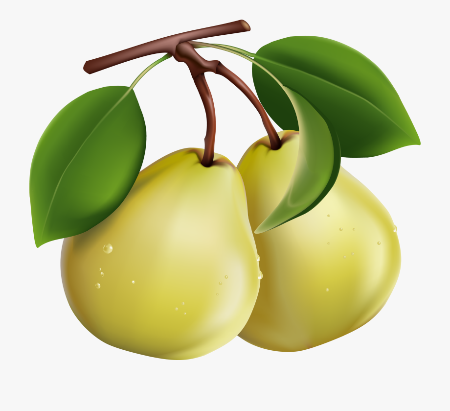 Fruit clip art pears. Pear clipart pair pear