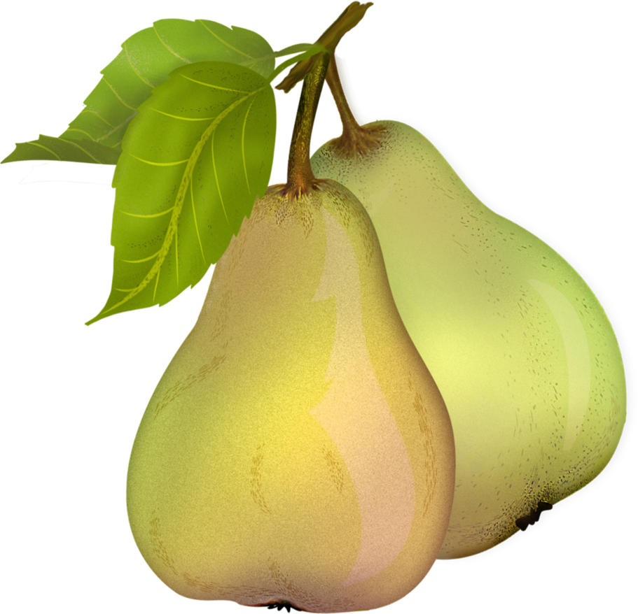 By roula on deviantart. Pear clipart pear fruit