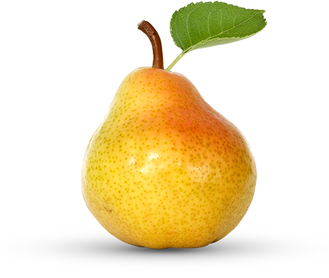 Produce the verygreen grocer. Pear clipart pear shape