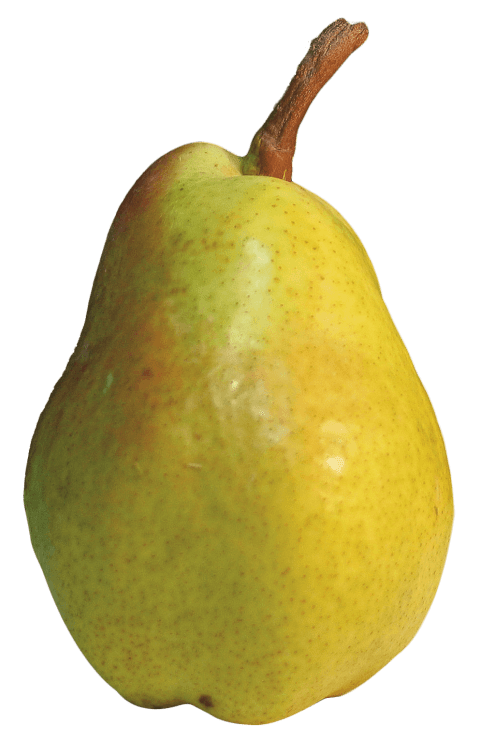 Png free images toppng. Pear clipart pear slice