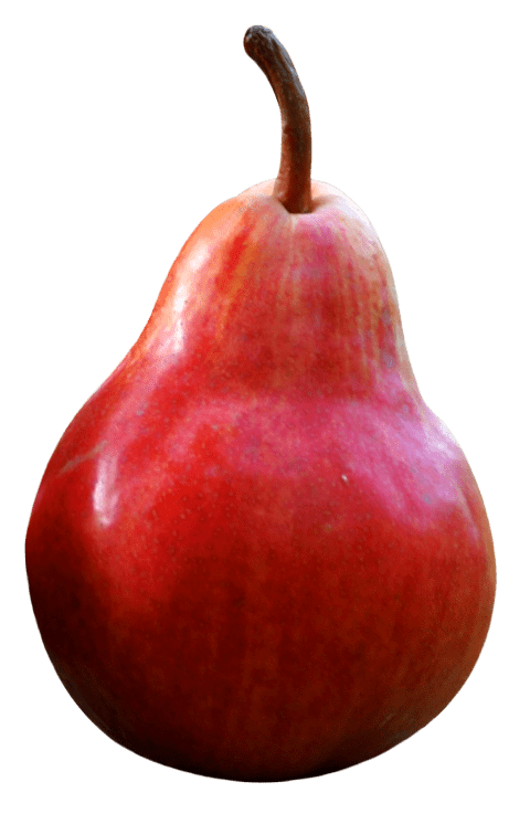 Fruits red png free. Pear clipart pear slice