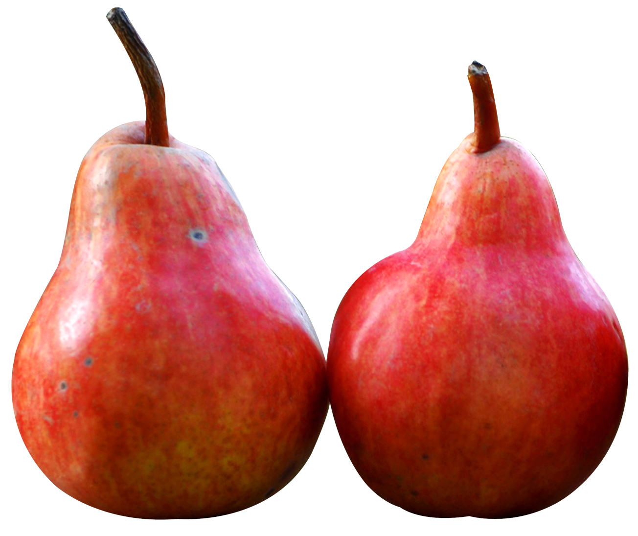 Two fruits png image. Pear clipart pear slice