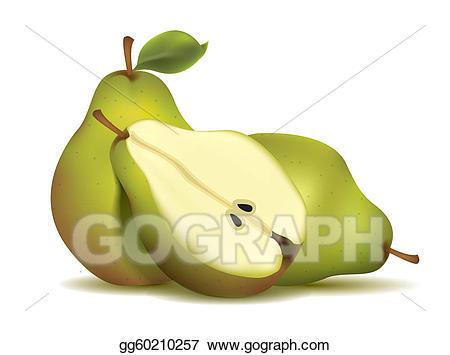 Pear clipart pear slice. Vector stock green sliced