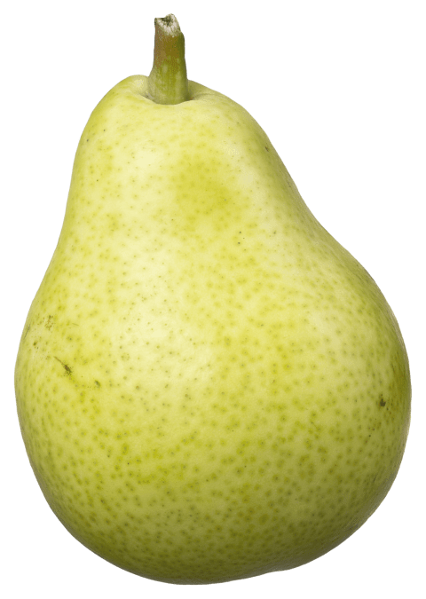 Pear clipart pear slice. Fruit png free images