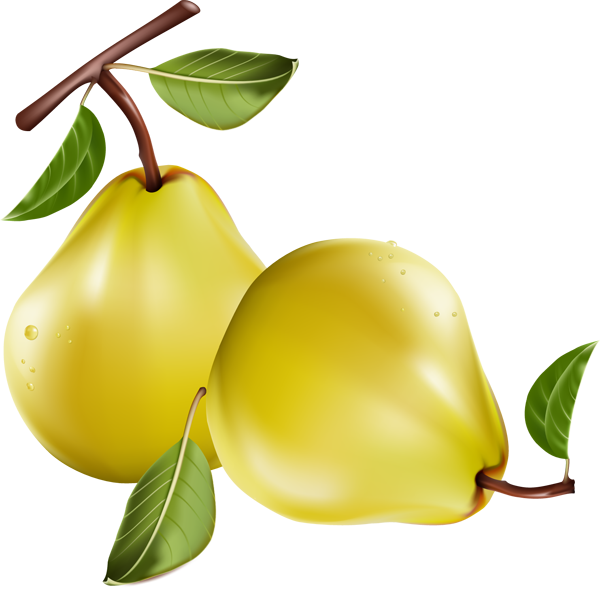Pear clipart poire. Fruits d t images