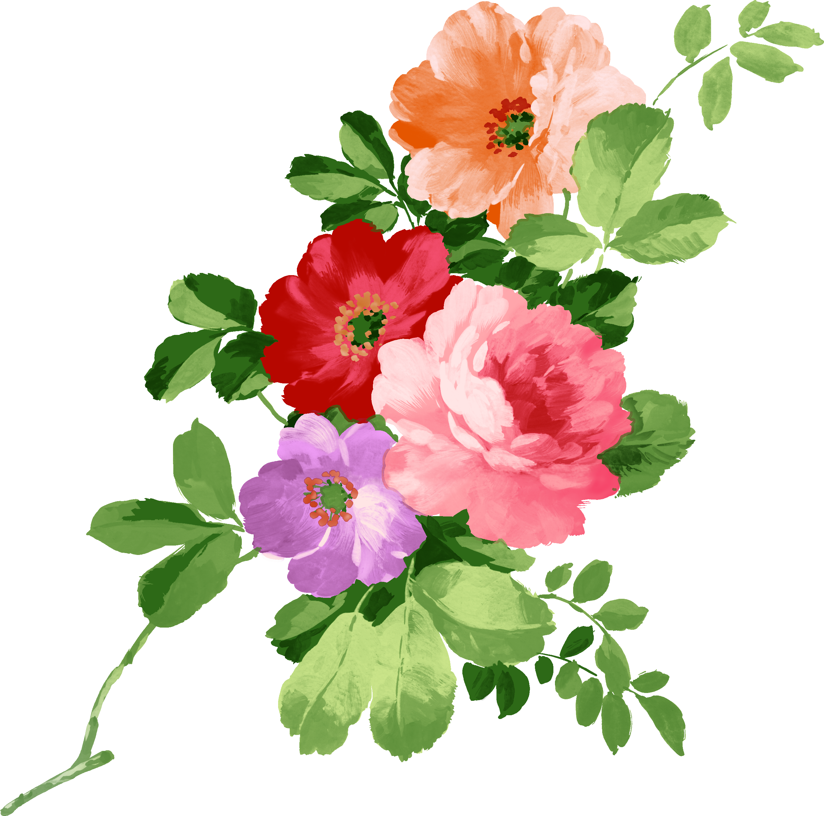 Pear clipart rose. Flowers multicolored png pinterest
