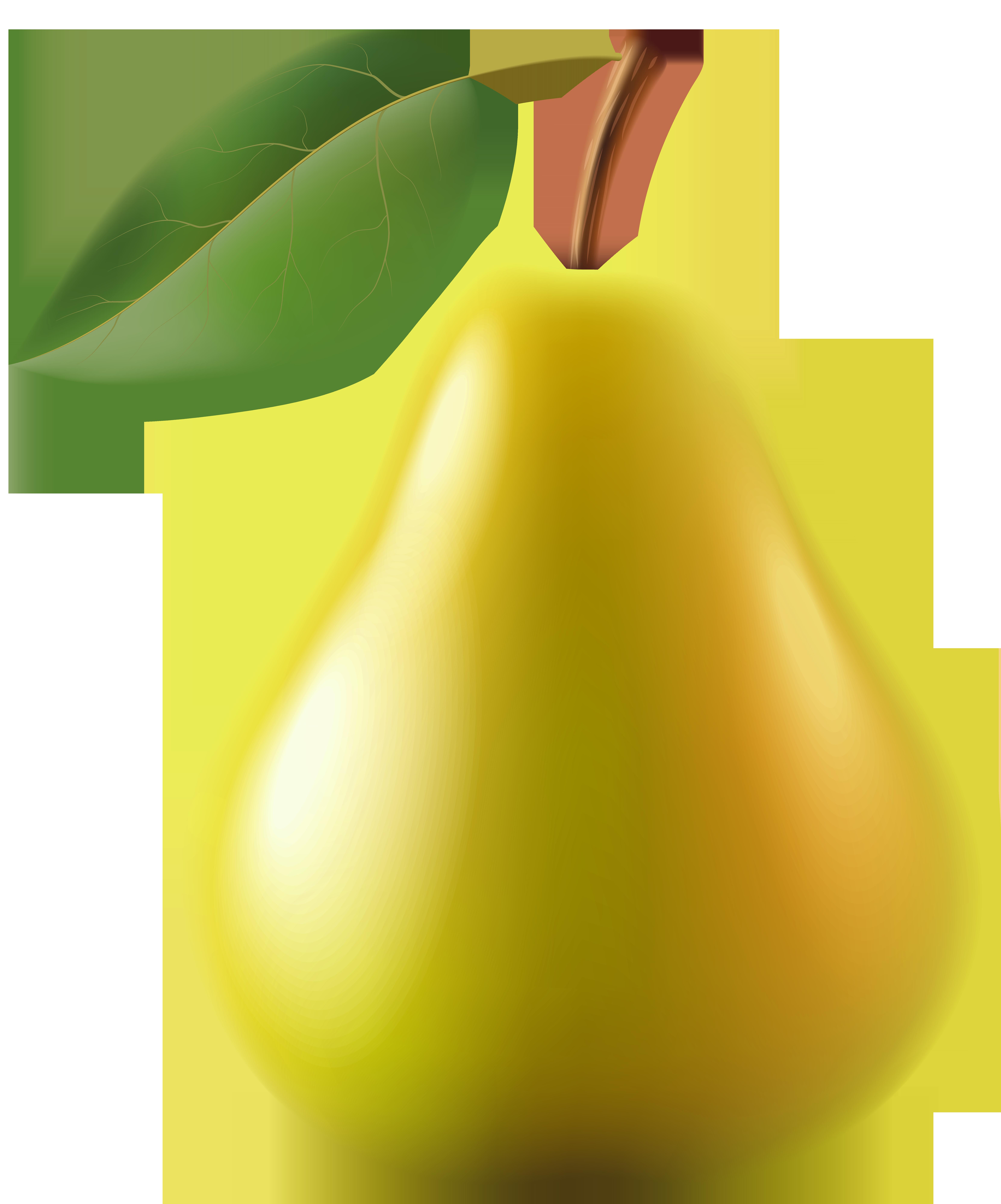 Pear clipart silhouette. Transparent png clip art