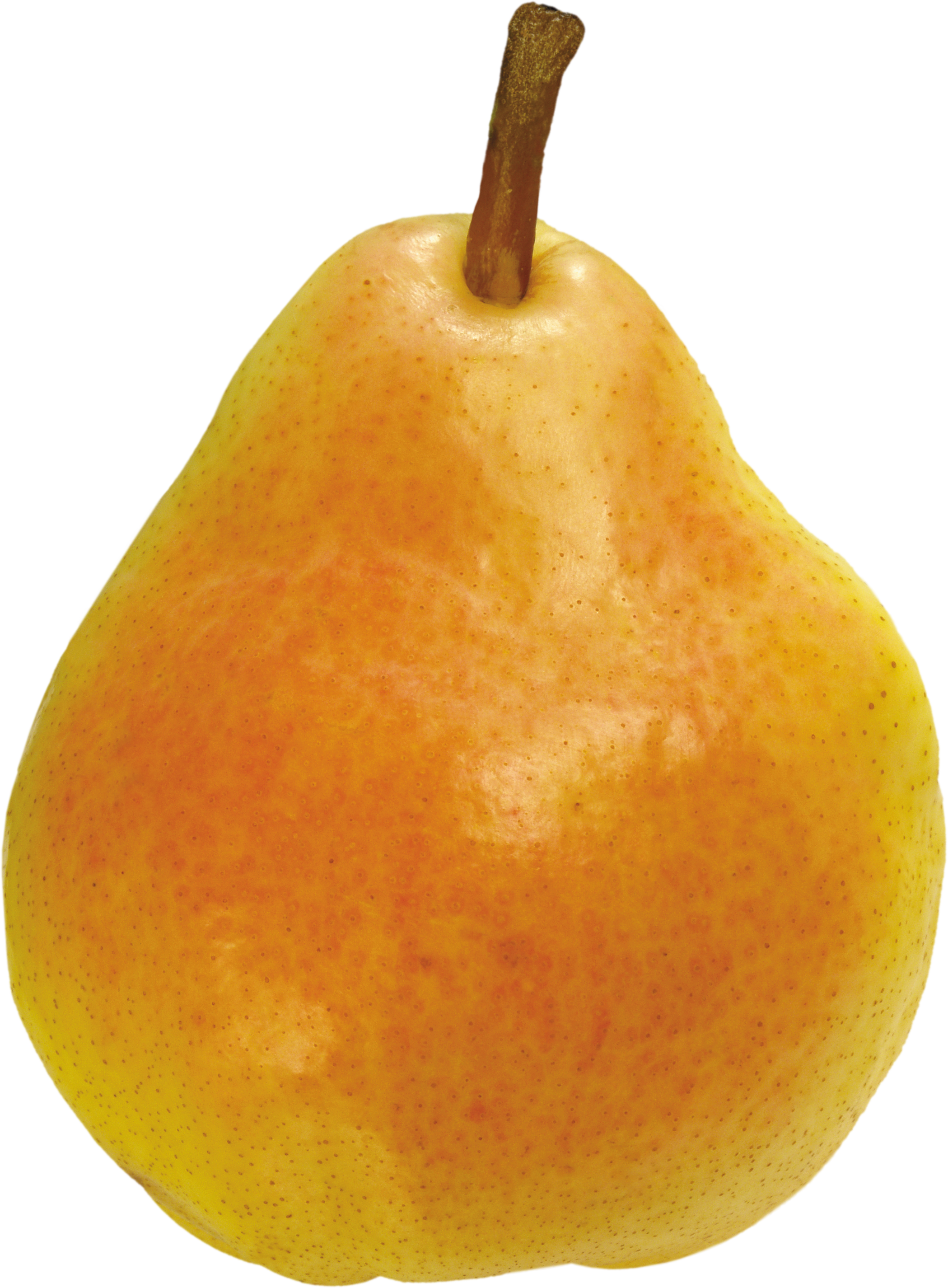 Pears png image purepng. Pear clipart transparent background
