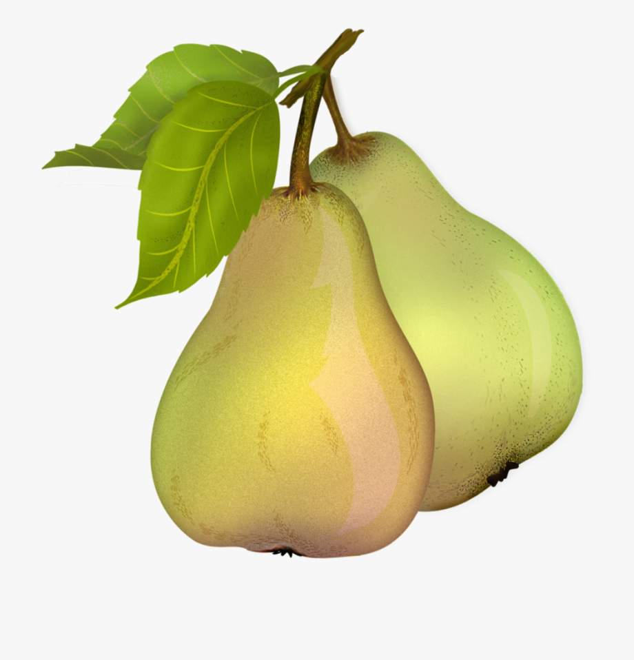 Pear clipart transparent background. Free download png