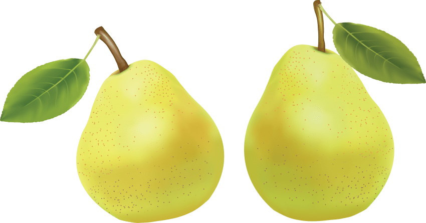 Pear clipart yellow pear. Png free images toppng