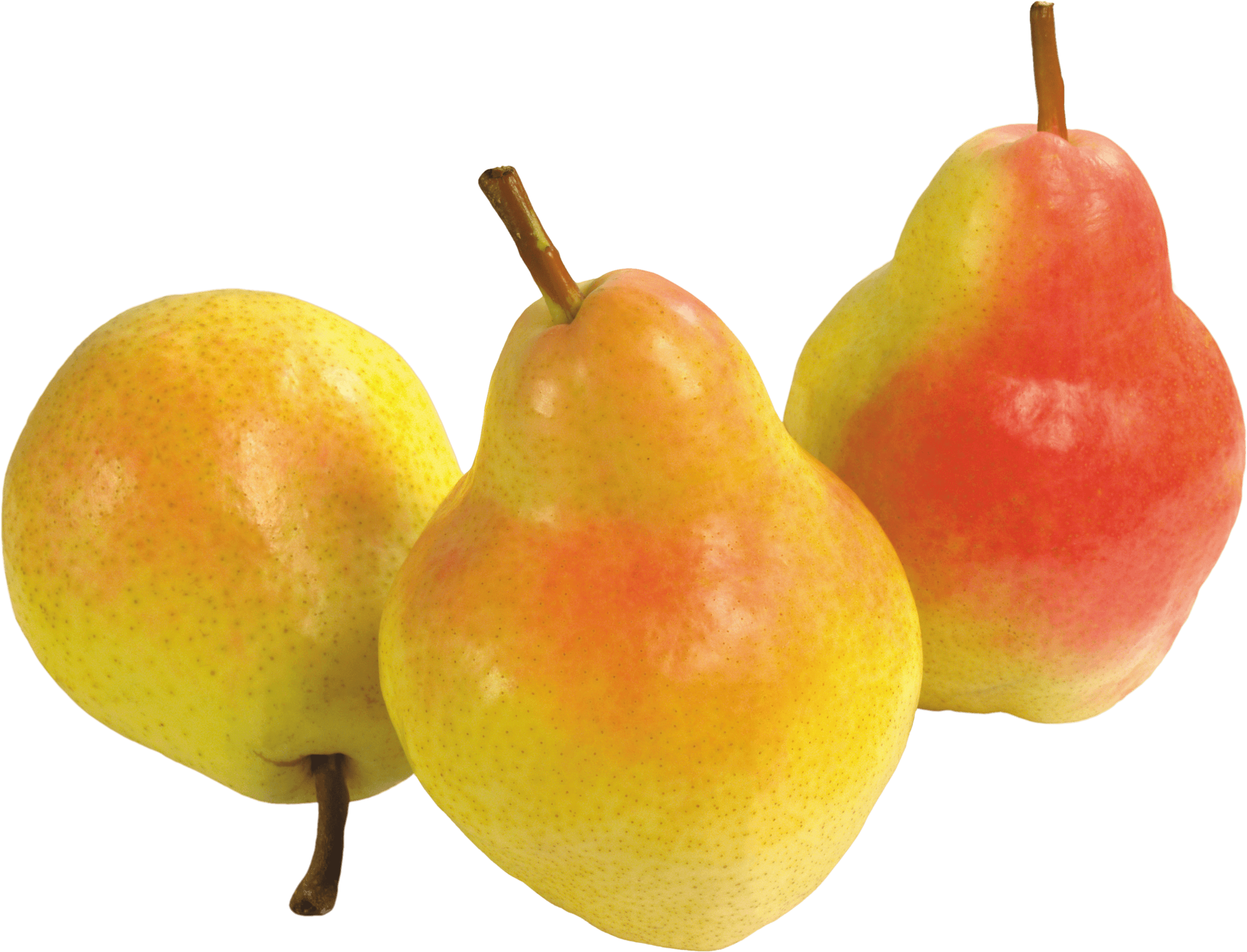Pear clipart yellow pear. Trio transparent png stickpng