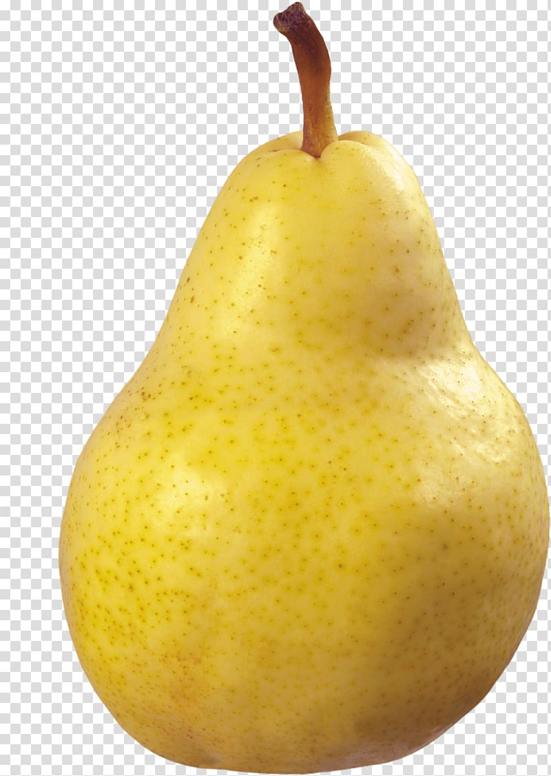 Asian fruit transparent background. Pear clipart yellow pear