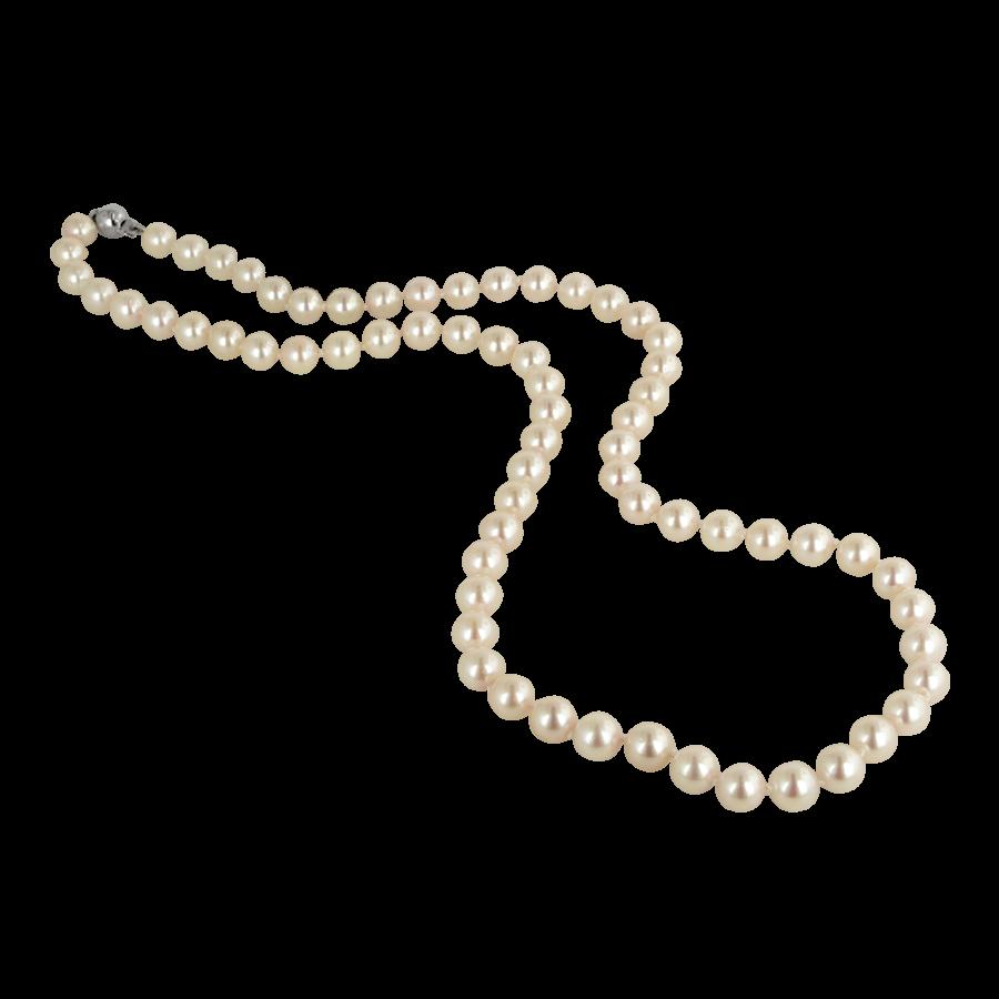 pearl clipart transparent