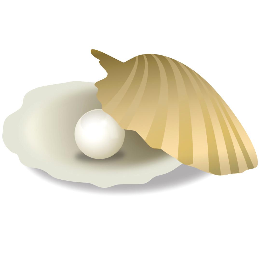 Pearls clipart. Clip art fresh pearl