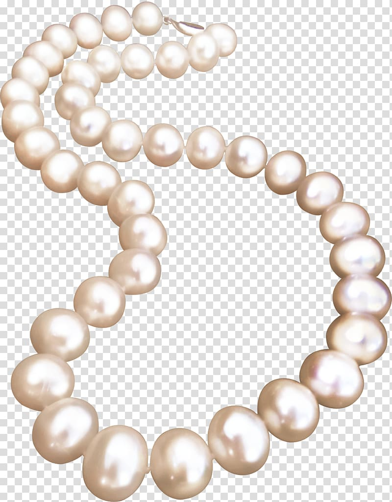 Pearls clipart neclace. Beaded white necklace illustration