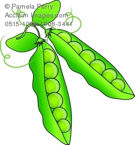 Clip art illustration of. Peas clipart