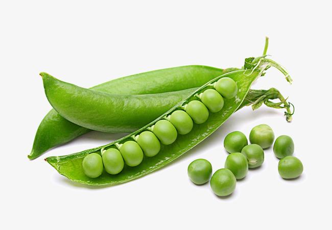 Peas clipart. Vegetable hq pictures fine