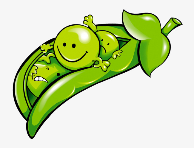Cartoon pea green png. Peas clipart