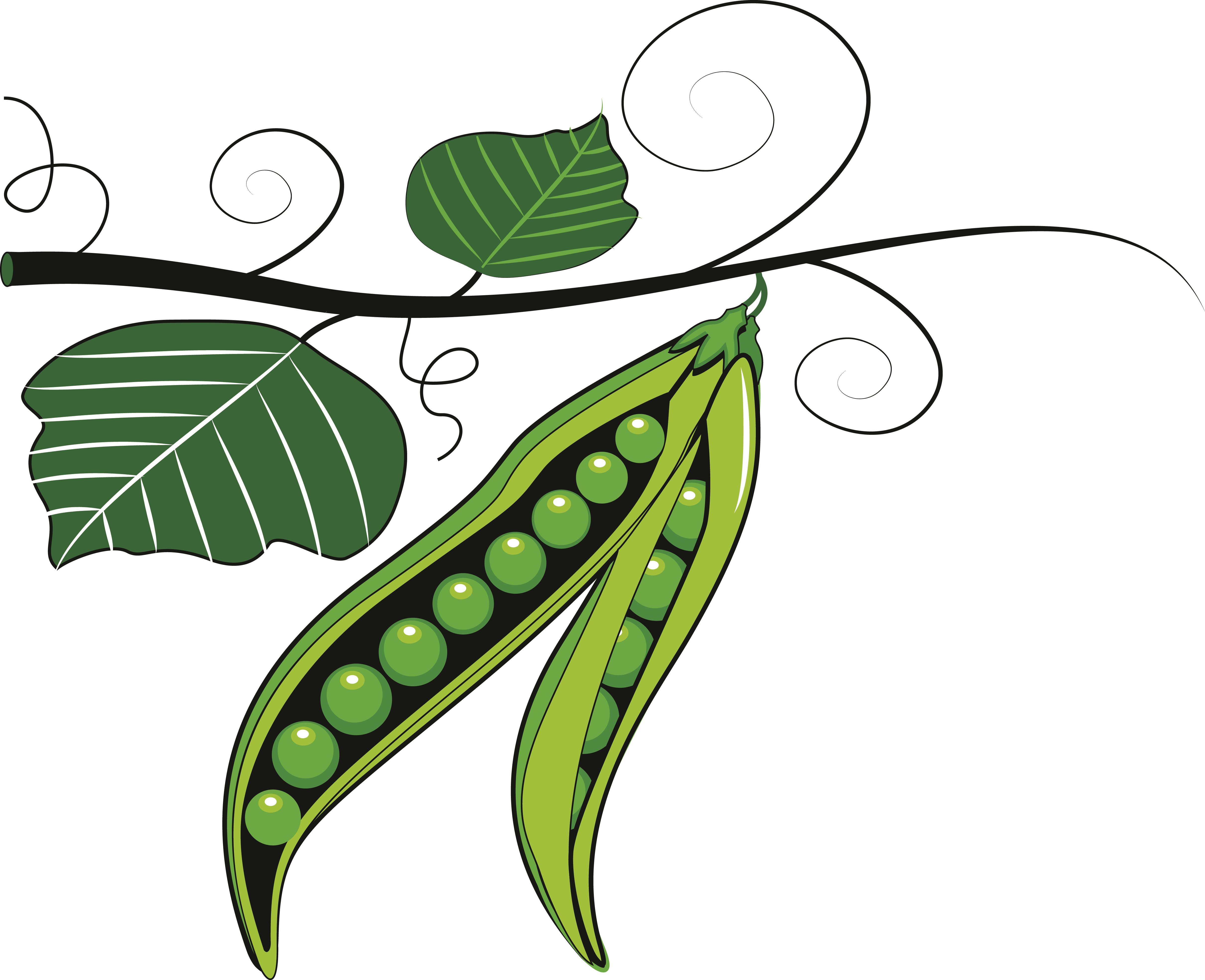 Cute Pea Clipart All About Clipart
