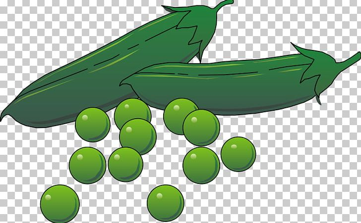 Pea pod png animation. Peas clipart vegetable