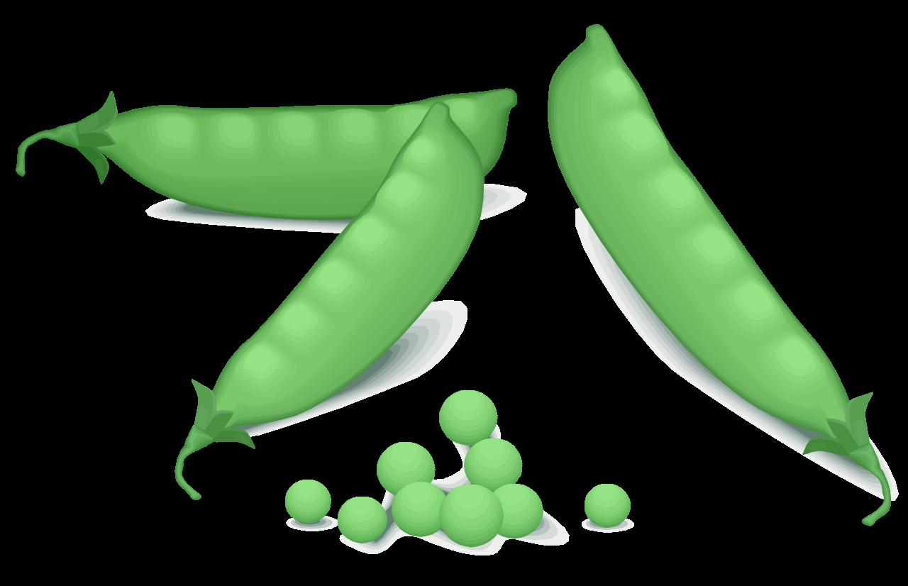 Svg frames illustrations hd. Peas clipart vegy